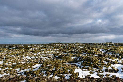 Iceland 2019 -_DLP7532
